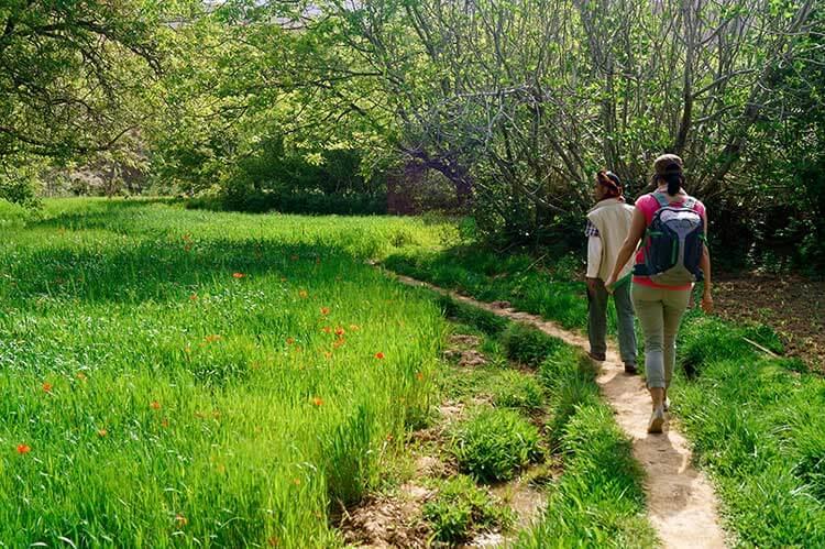 Wandelen in groene oase van Marokko